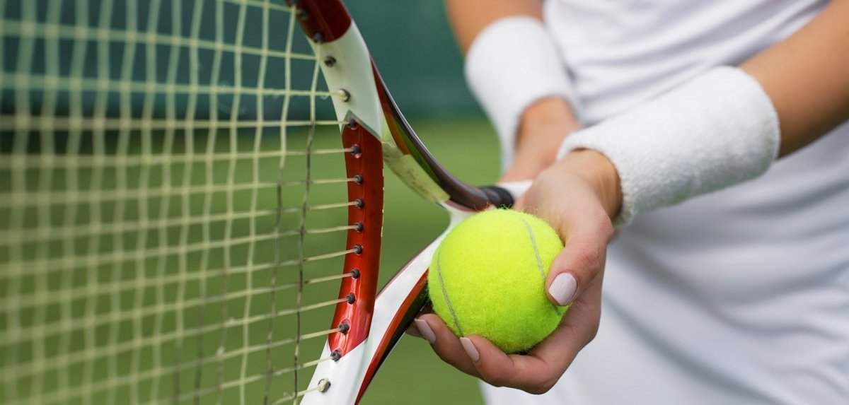 Особенности ставок на теннис в букмекерских конторах