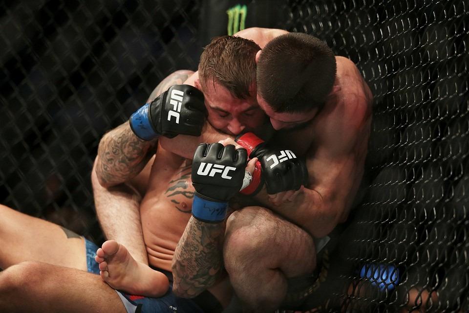 Гонорары UFC 242: Хабиб заработал 6,09 миллиона долларов, Порье – 290 тысяч