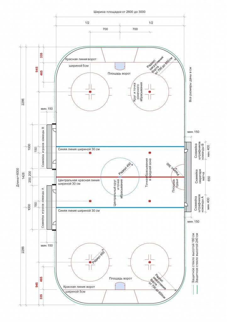 razmetka hockeynogo polya