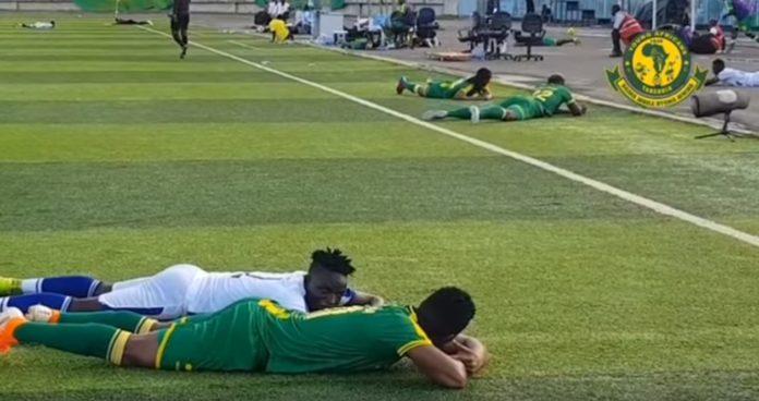 V Tanzanii futbolistov atakovali pchely