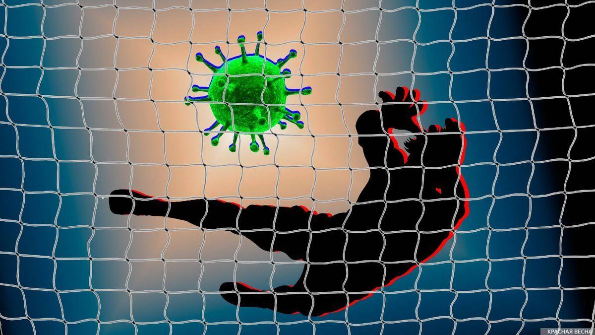 На что ставить в разгар коронавируса?