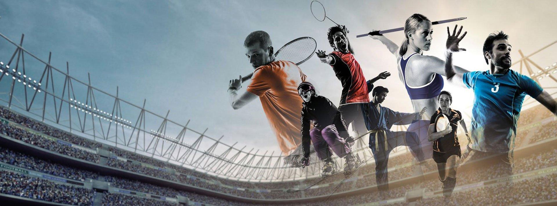Spetsializatsiya v stavkah na sport