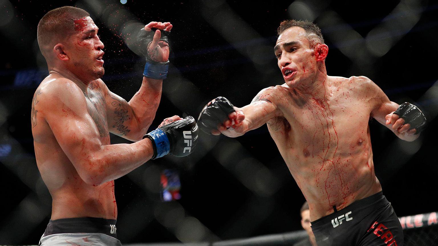 Тони Фергюсон - Джастин Гэтжи: коэффициенты и прогноз на 19 апреля на UFC 249