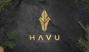 HAVU Gaming po CS GO istoriya komandy igroki osobennosti stavok