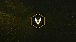 Team Vitality po CS GO istoriya komandy igroki osobennosti stavok