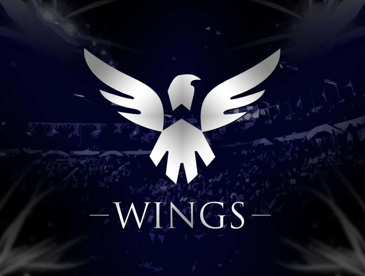 Wings Gaming po Dota 2 istoriya komandy igroki osobennosti stavok